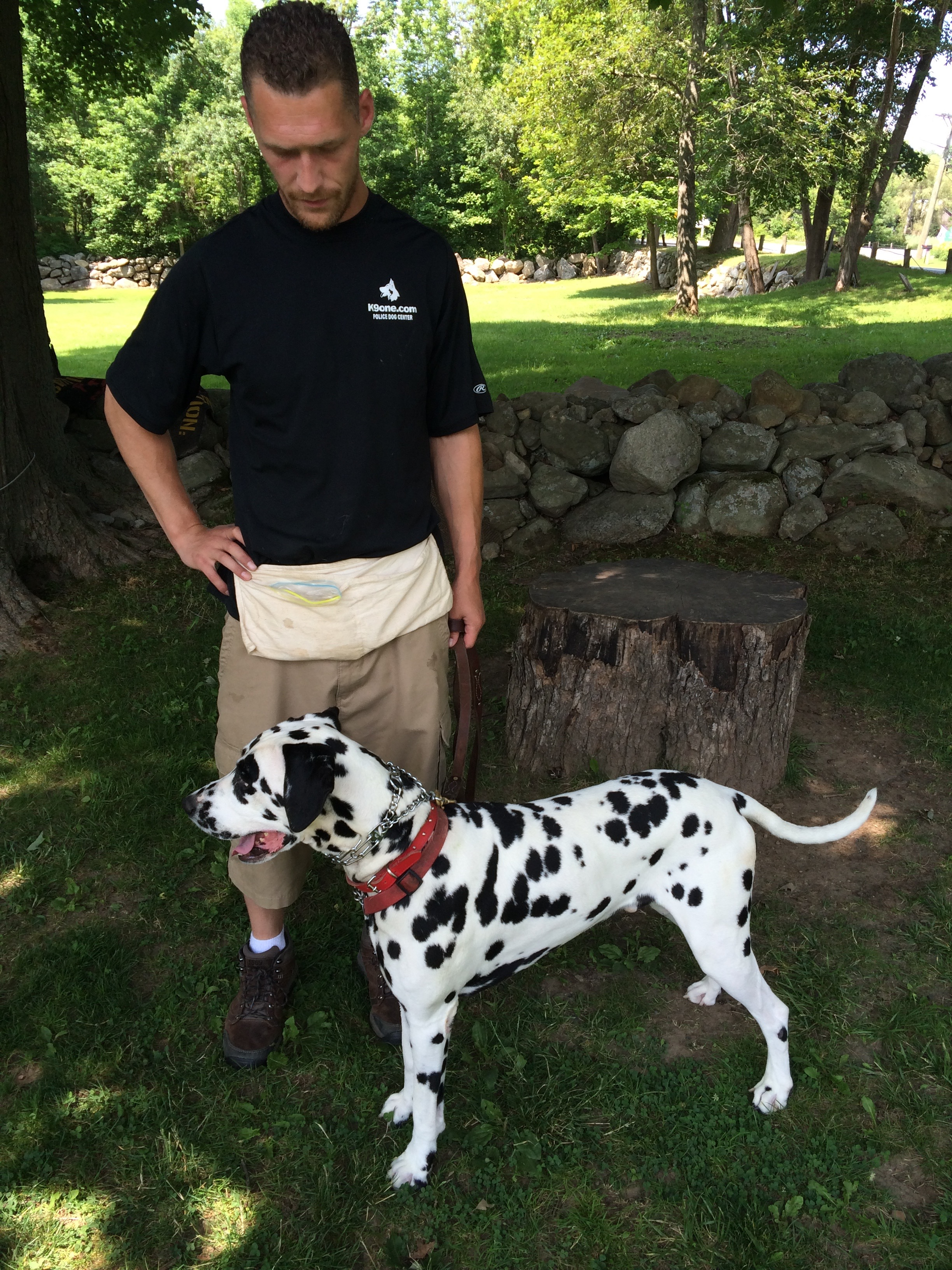 Stonehill Kennel dog training